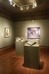 Bodies in Conflict: From Gettysburg to Iraq, Image 15 by Schmucker Art Gallery