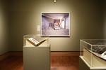 Bodies in Conflict: From Gettysburg to Iraq, Image 3 by Schmucker Art Gallery