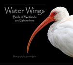 Water Wings: Birds of Wetlands and Shorelines by Sandra K. Blair