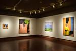 William Clutz: Crossings, Image 19 by Schmucker Art Gallery