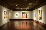 William Clutz: Crossings, Image 18 by Schmucker Art Gallery