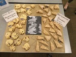 Game of Scones by Musselman Library