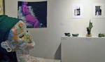 Juried Student Exhibition 2010 by Schmucker Art Gallery