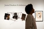 Juried Student Exhibition 2016, Image 1 by Schmucker Art Gallery