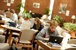 Library Students Studying